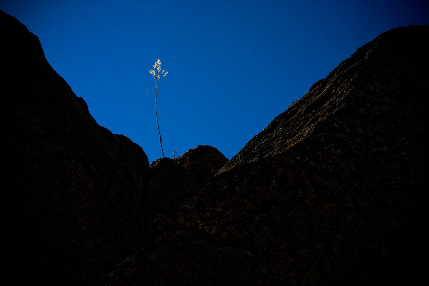 Arizona Landcape Photography