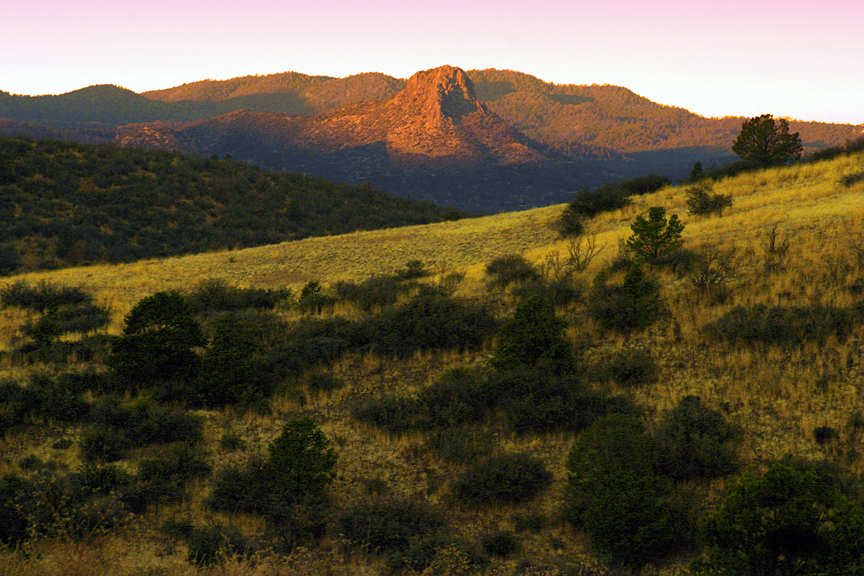 Flagstaff Arizona Professional Photography